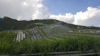 Damage of St. Thomas solar field 11 05 17